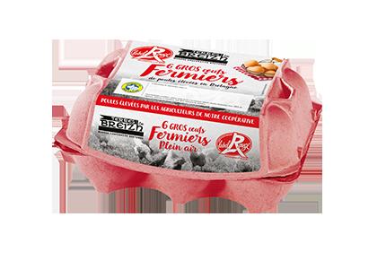 Oeufs fermiers label rouge Terres de Breizh page accueil