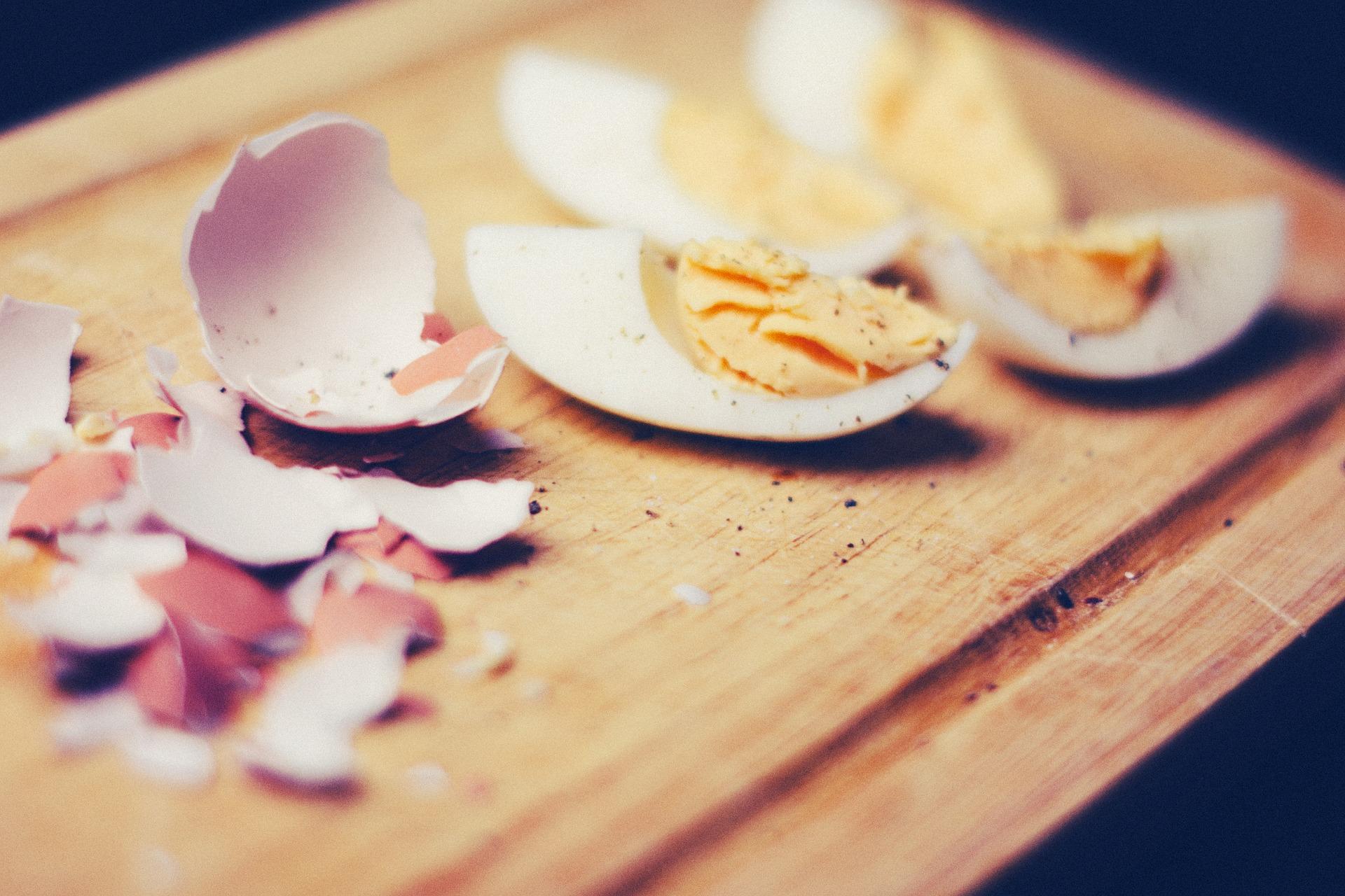 Terres de Breizh vous dit tout sur l'œuf !