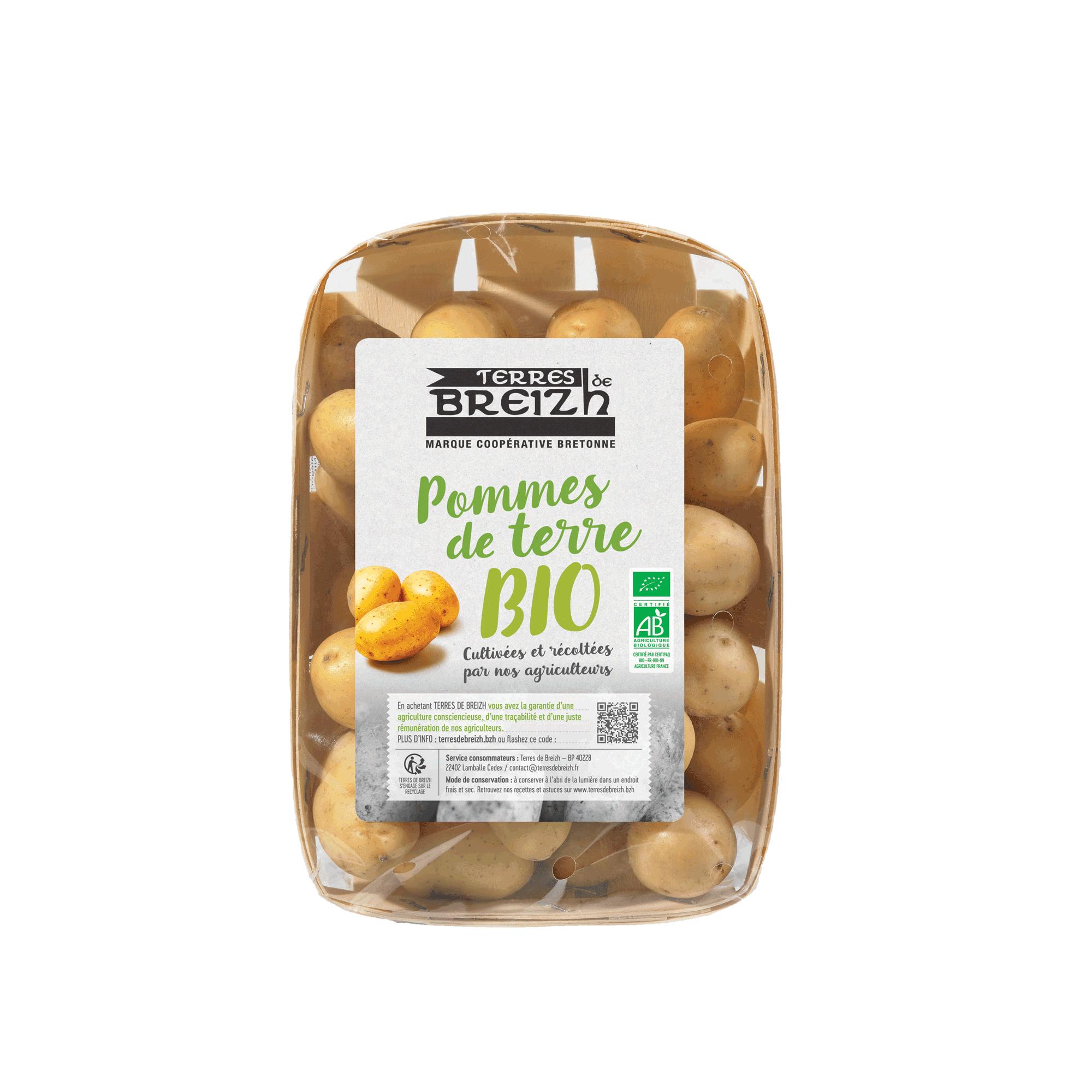 Pommes-de-terre-Bio-Terres--de-Breizh---web