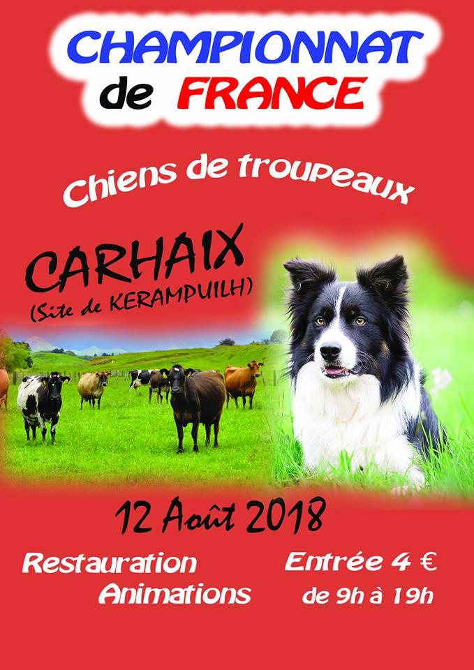 Championnat de France de chiens de troupeau