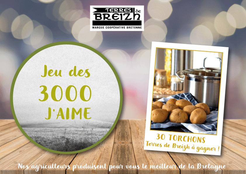 Participez-au-jeu-Facebook-Terres-de-Breizh-dès-maintenant-!