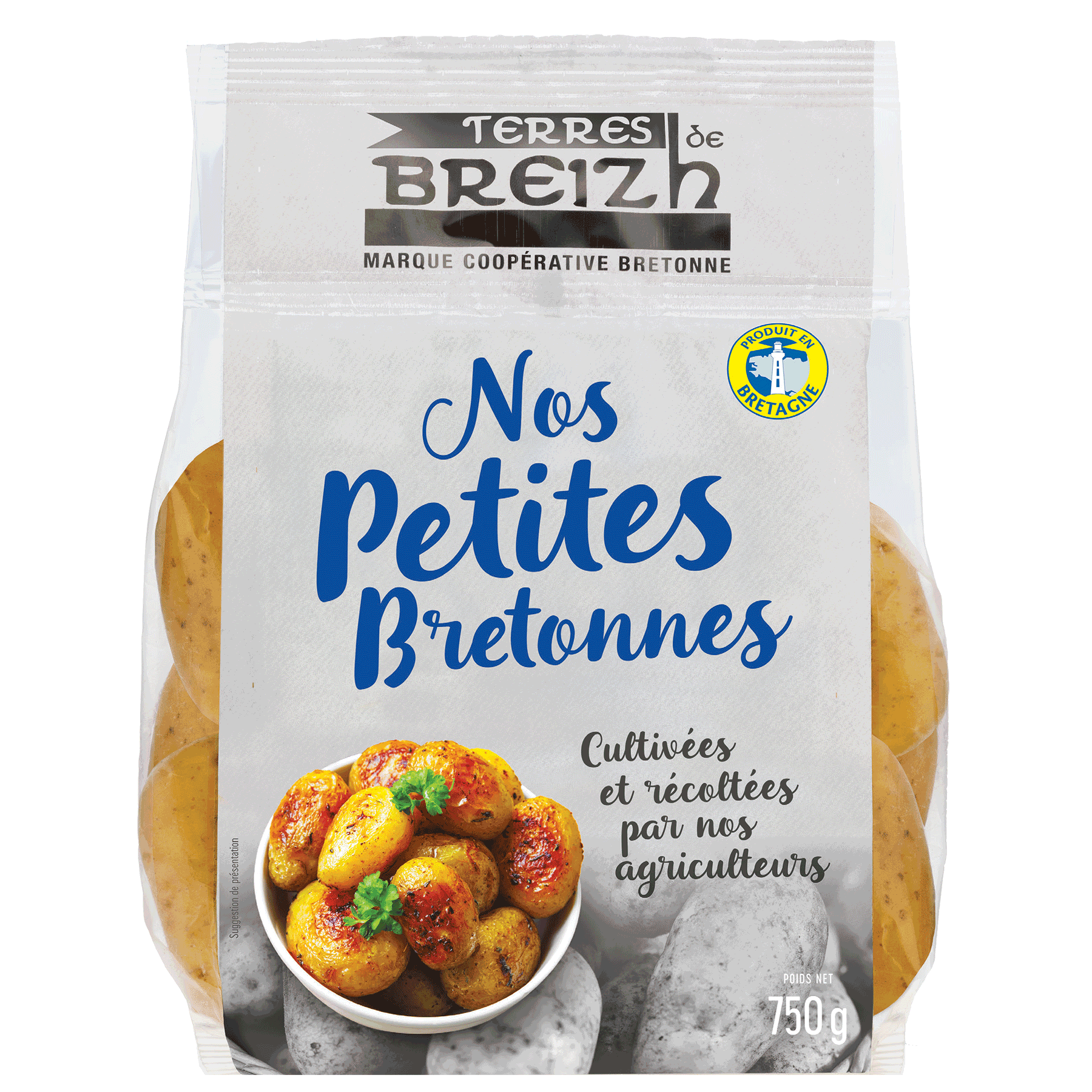Nos-petites-bretonnes-terres-de-breizh