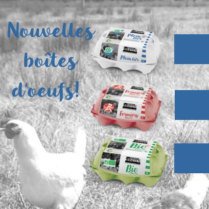 nouvelles boîtes d'oeufs Fev 2020 accueil site web