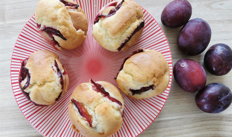 Muffins aux prunes - Terres de Breizh (2) (Large)